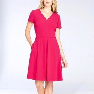 Tahari - Scalloped Neckline Fit and Flare Dress!